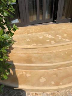 sandstein treppe sanieren steinerg nzungsm rtel restaurieren einer sandsteintreppe. Black Bedroom Furniture Sets. Home Design Ideas